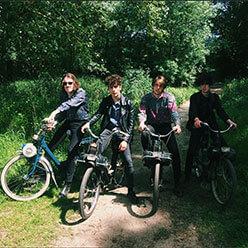 Wild Fox : quatre garçons dans le Van